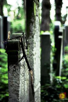 Urban / Berlin Jewish Cemetery