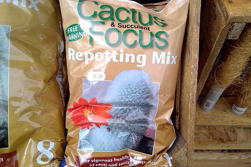 Cactus & Succulent Repotting mix 2ltr