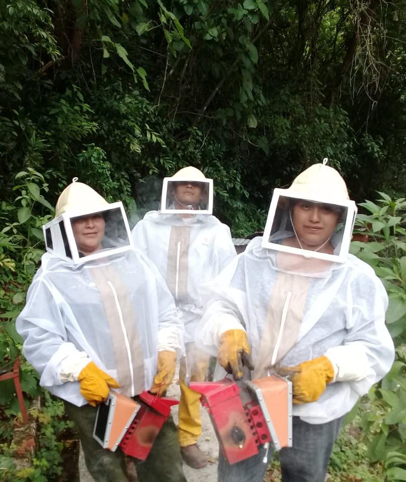 apicultura 2.jpg