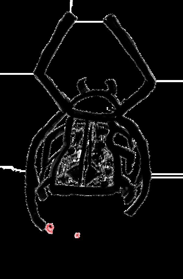 escarabajo arlequin.png