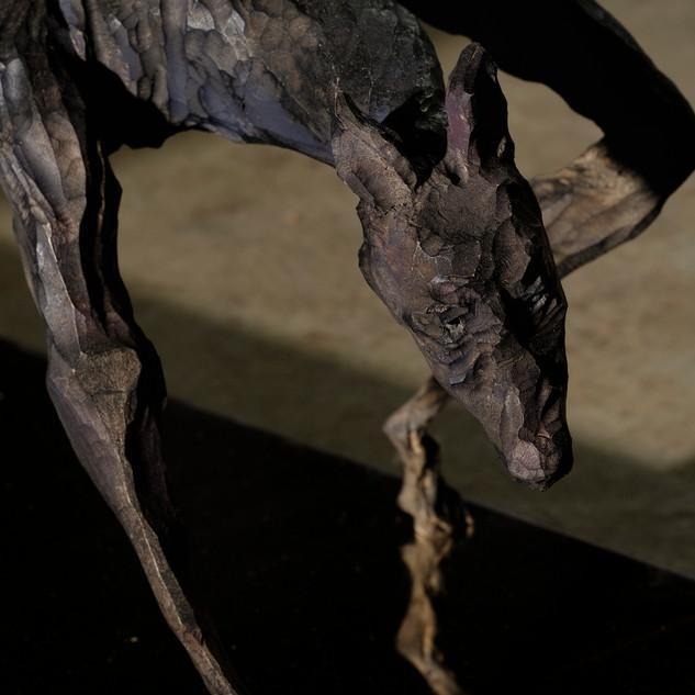 印象之犬 I