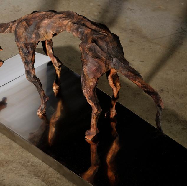 印象之犬 II