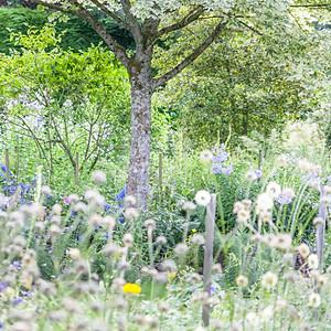 Stanton Hall Gardens - Research Trip