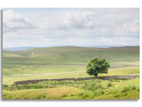 The Northumberland stretch of The Pennine Way - Part 5 - Bellingham to Padon Hill