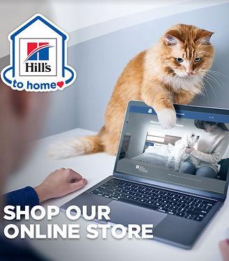 ShopOnlineStore.JPG