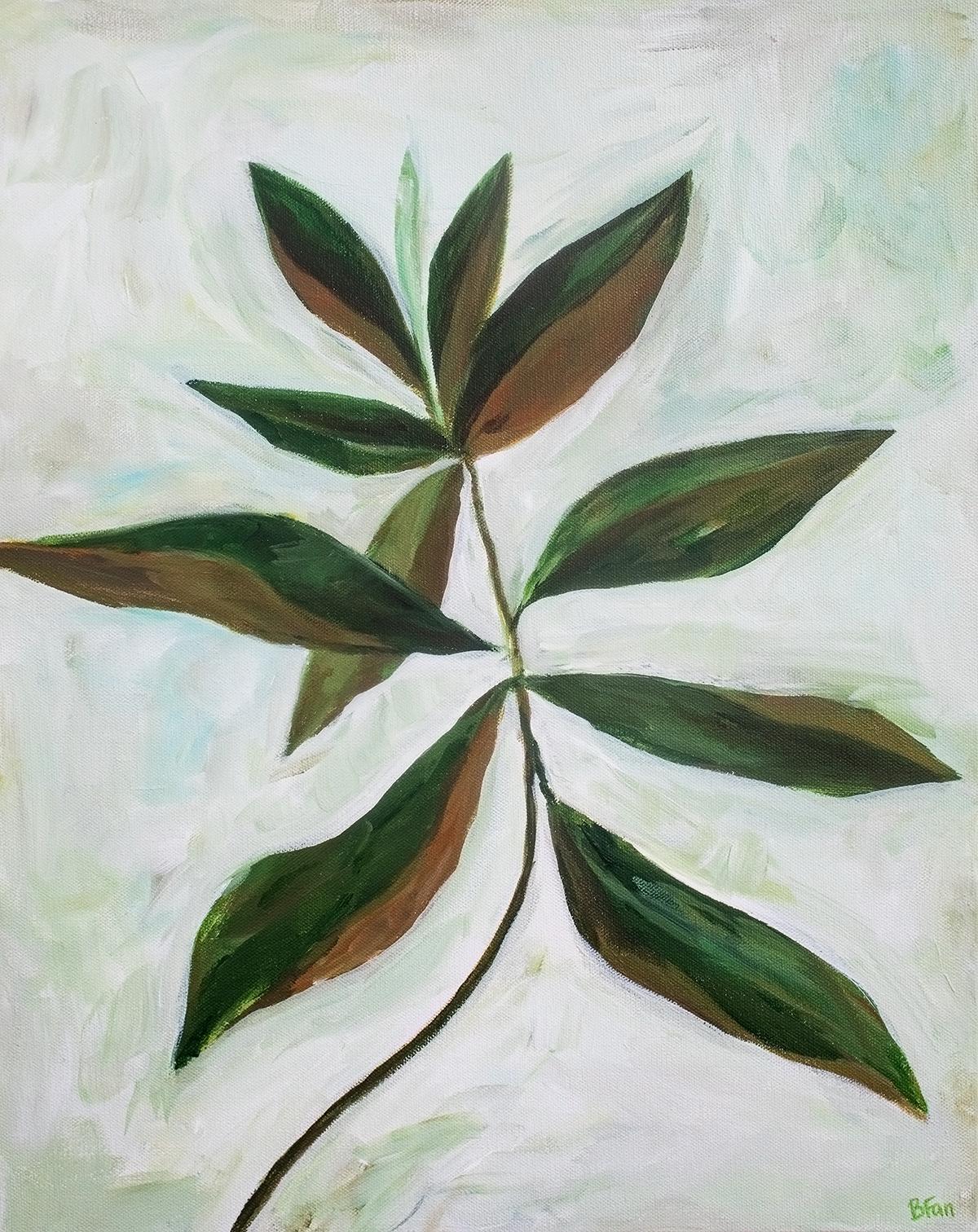 Magnolia Study