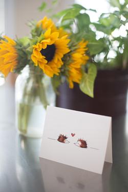 Hedgehog Cards