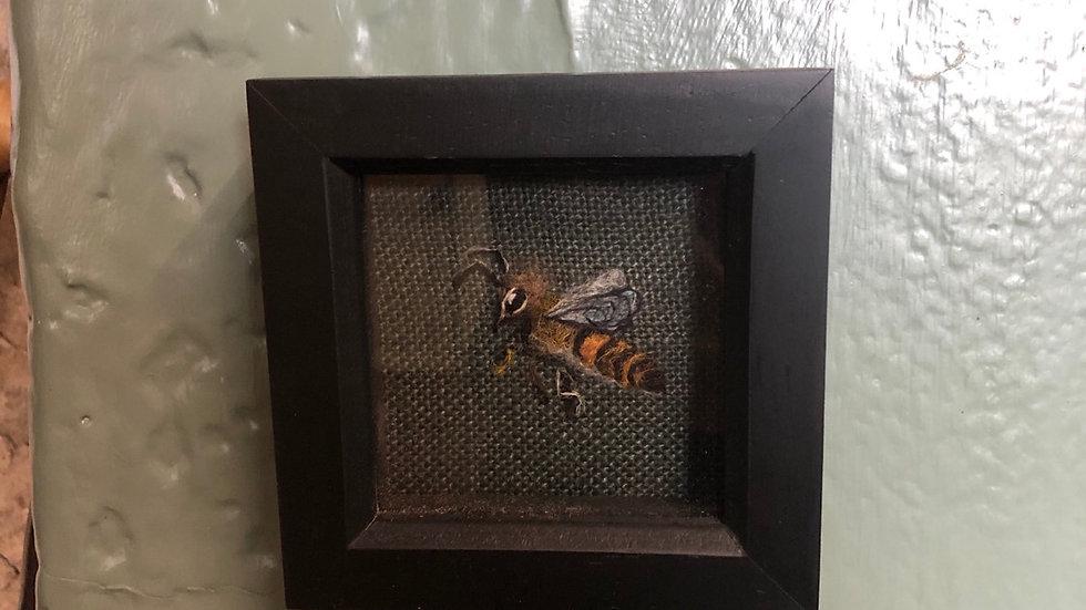 Mini bee black frame