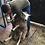 Thumbnail: Stag silhouette needle felting kit on Harris tweed