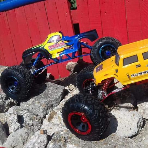 Pair of Rock Crawlers...