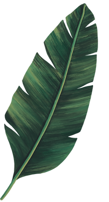 leaf%25203_edited_edited.png