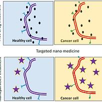 Localized Nanotheranostics.png