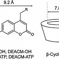 Use%20of%20cyclodextrins%20as%20scavenge