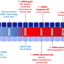 15 years on siRNA delivery beyond the St