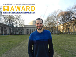 Nanomaterials 2020 Young Investigator Award