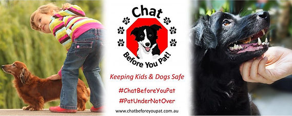 Chat Before You Pat founded by Dog Train