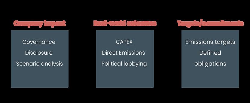 Real World Company Impact-01-01.png