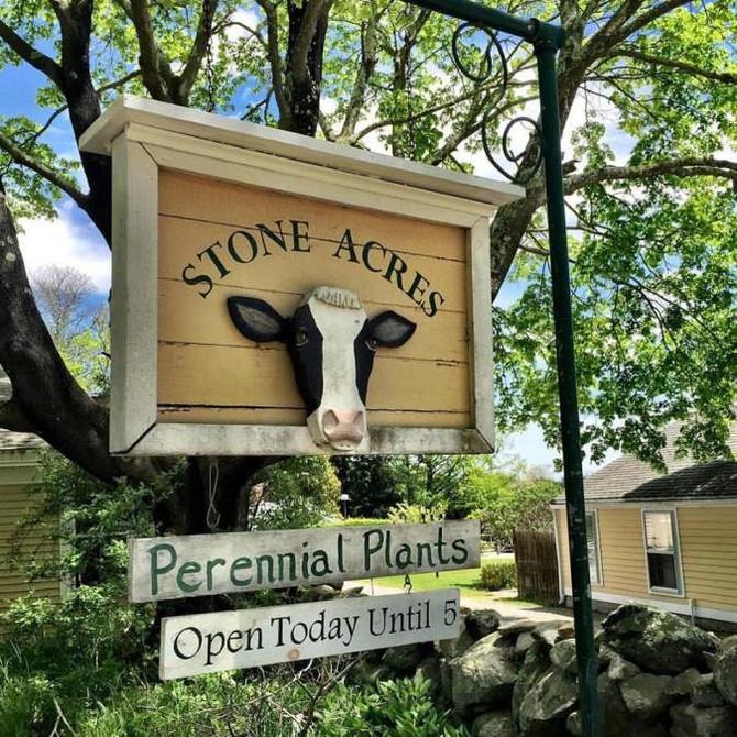 STONE ACRES FARM EXPERIENCE