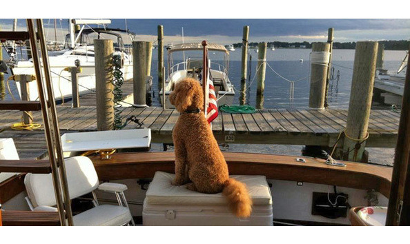 MYSTIC SHIPYARD DONATES BOAT SLIP TO BENEFIT MASH