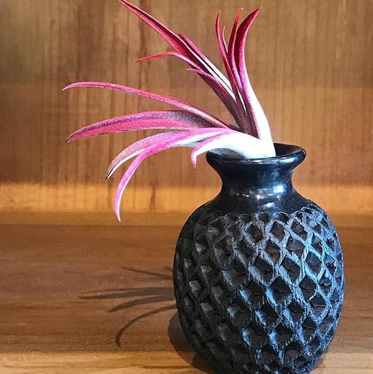 Coyotepec Vase