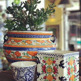 Collection of Planters
