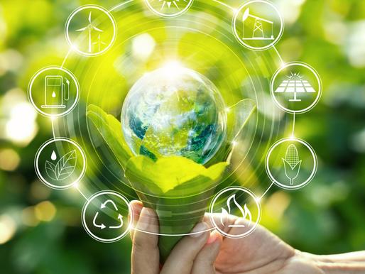 Sustentabilidade: O segredo para preservar a saúde física e mental