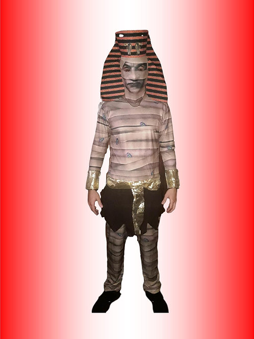 Múmia Cód 4117
