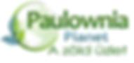 Paulownia Planet Cotevisa 2 kínai császárfa