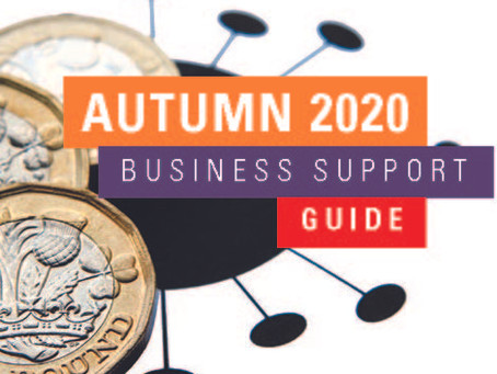 Business Support Guide (Autumn 2020)