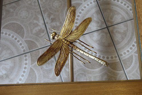 Large Dragonfly