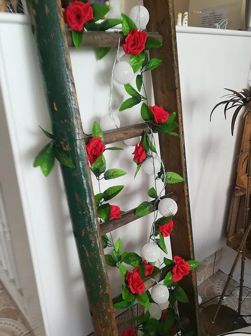 Original Apple Tree Ladder
