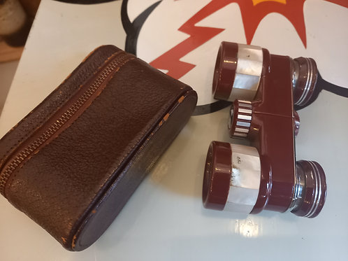 Vintage Opera Glasses and Case