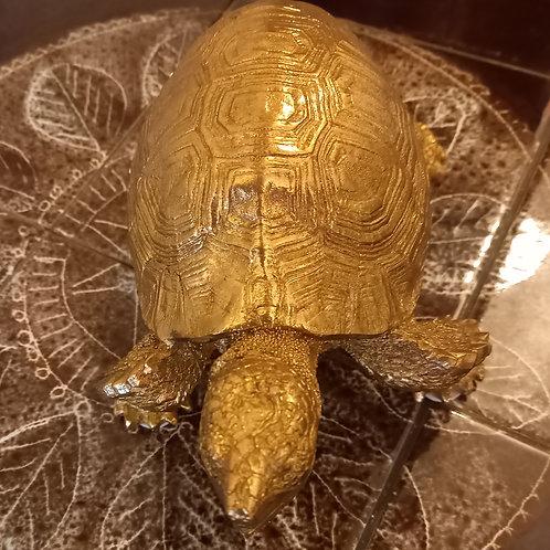 Gold Decor Tortoise