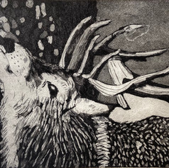 Etching and Aquatint.