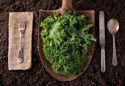 Eat of the Garden