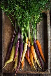 bunch-of-fresh-rainbow-carrots-picture-i