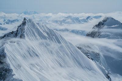 Polar NAT HLA.jpeg