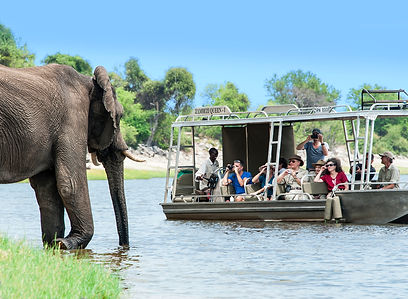 River Cruises-Chobe.jpg