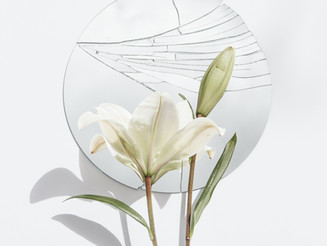 Onda Encantada del Espejo Blanco