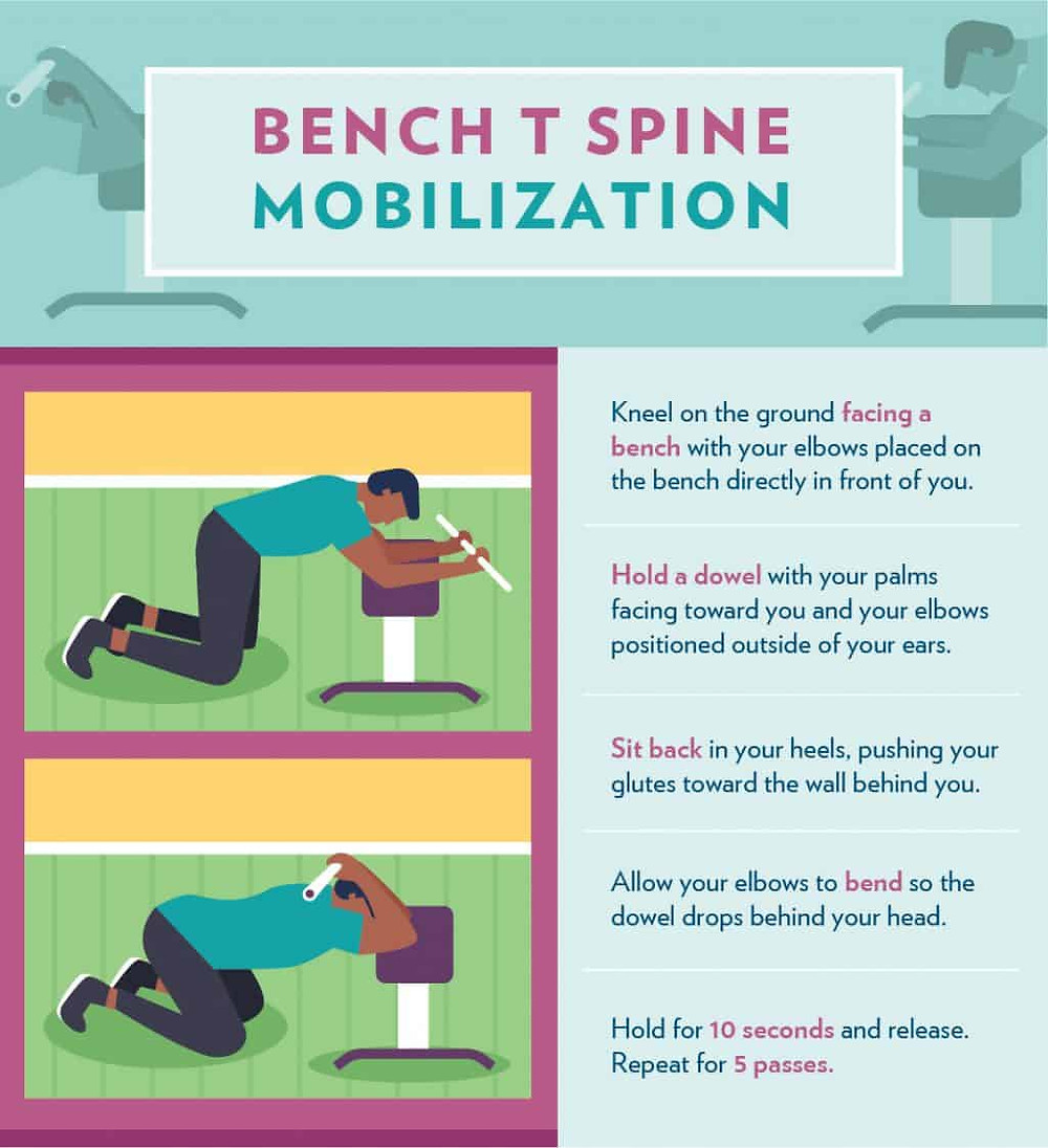 Bench T Mobilization infographic