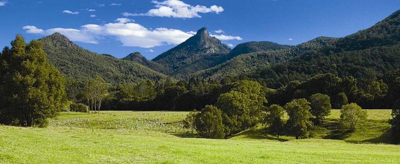 Mt Warning National Park