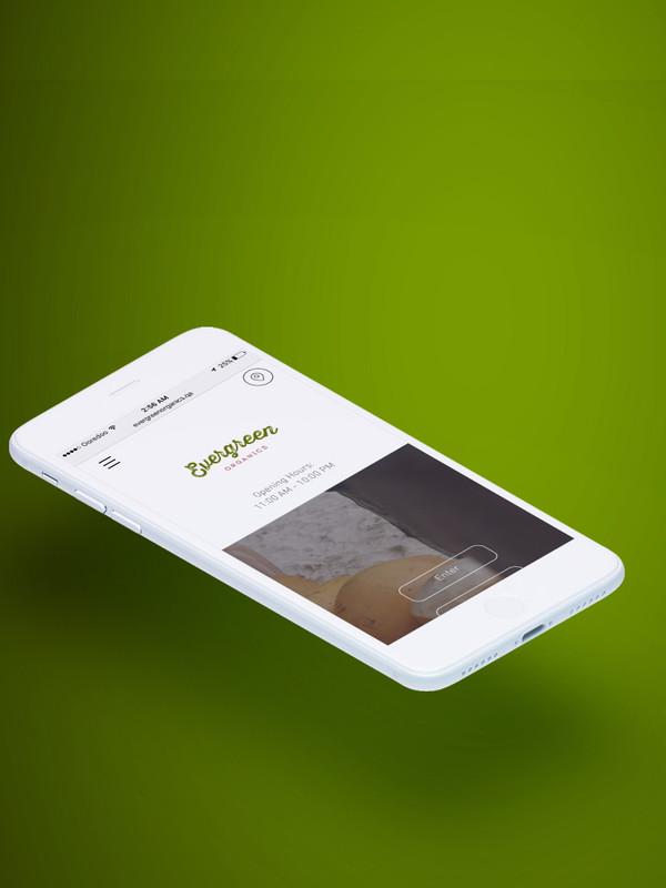 4-mobile-home-evergreen.jpg