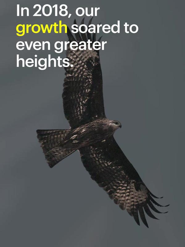 1-falcon-story.mp4