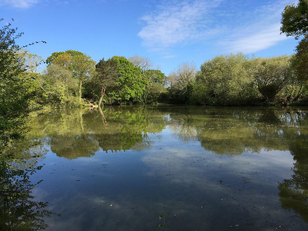 Luckfield Lake, Broadmayne, Dorset.