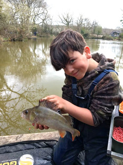 Ollie and a hungry Perch