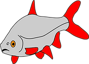 Fish only right.png