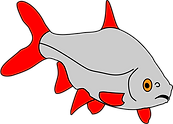 Fish only.png
