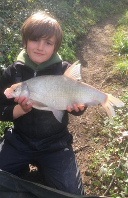 The sun and the Bream came out to play f