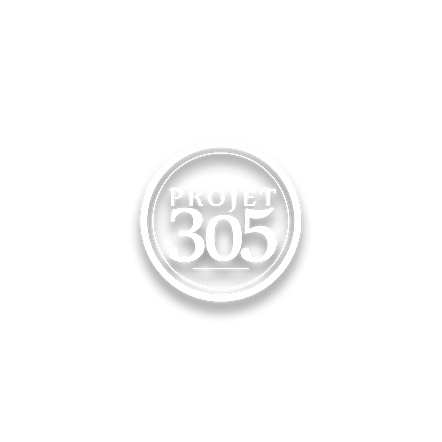 projet 305.png