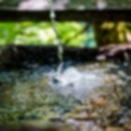 photo-1560411283-c9b2dfc0d6d1.jpeg